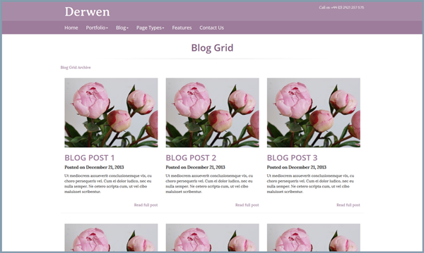 screenshot of the derwen blog grid layout showing 3 blogs excerpts across
