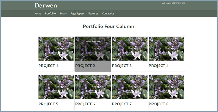 screenshot of the derwen portfolio layout showing 4 portfolio excerpts across and a hover effect with text showing on the hover