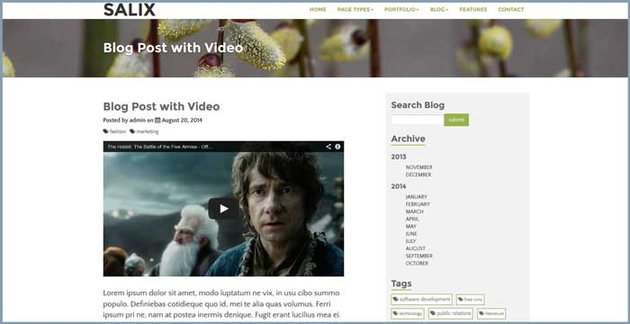 screenshot of the salix blog post page showing a responsive video embed